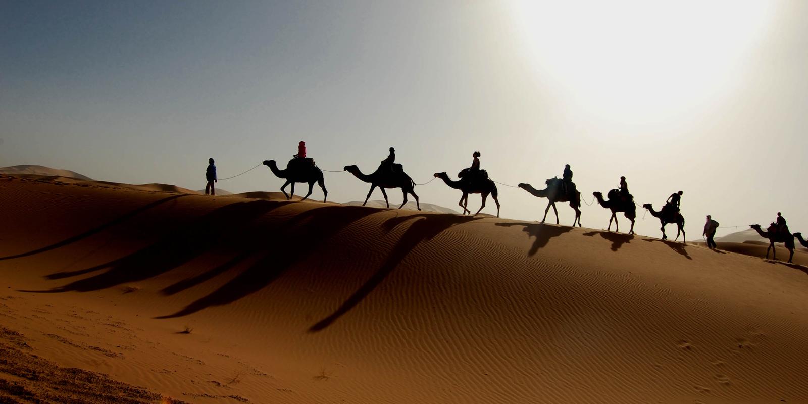 Zagora : To the door of desert | Maroc Excursion